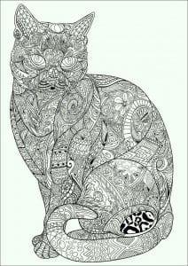 раскрашивать раскраски кошек А4