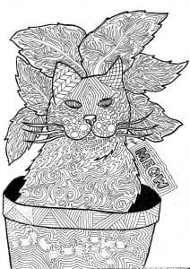 раскраска кошка А4