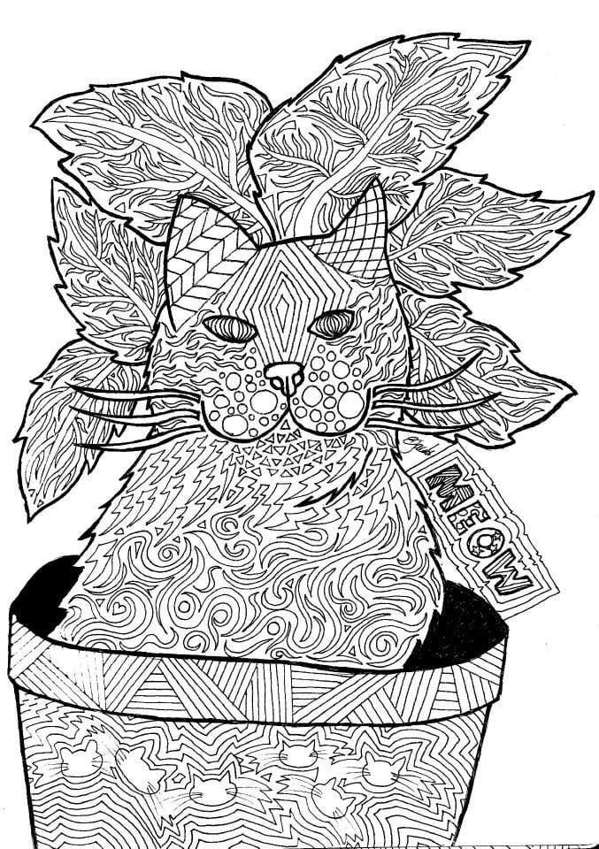 раскраска кошка А4 - Рисовака
