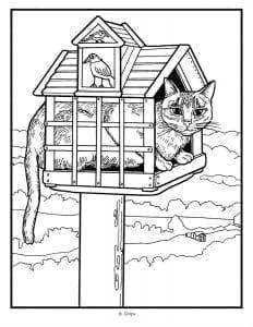 раскраска красивая кошка