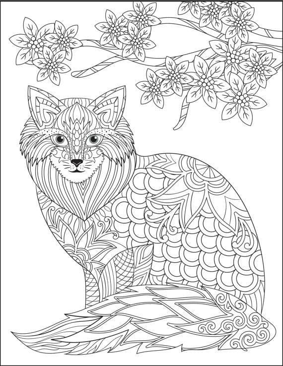 раскраска принцесса кошка - Рисовака