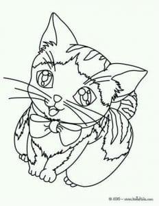 раскраски для девочек кошки котята бесплатно А4