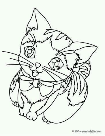 раскраски для девочек кошки котята бесплатно а4 рисовака