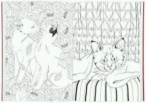 раскраски для девочек распечатать животные кошки А4