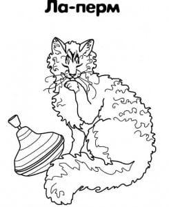 раскраски для самых маленьких кошка