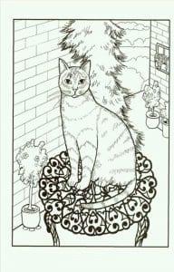 раскраски домашние животные кошки