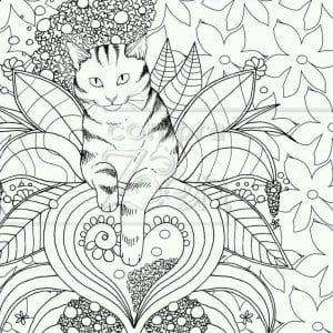 раскраски кошки распечатать бесплатно