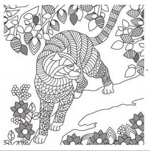 раскраски про кошек