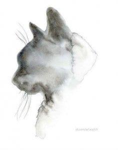раскраску кошки скачать