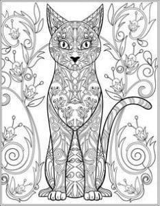 раскраску напечатать кошку