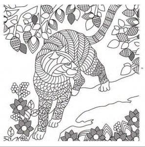 скачать раскраски кошки бесплатно