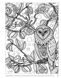 сова раскраска (11)