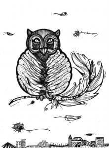 сова раскраска (111)
