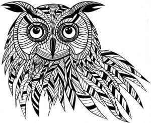 сова раскраска (112)