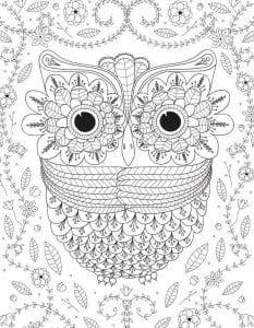 сова раскраска (115)