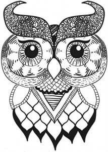 сова раскраска (119)