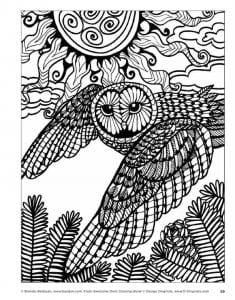 сова раскраска (12)