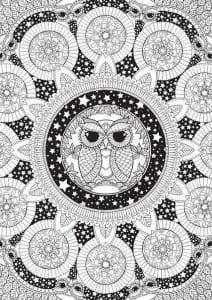 сова раскраска (130)