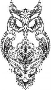 сова раскраска (132)