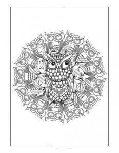 сова раскраска (137)