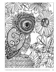 сова раскраска (14)