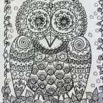сова раскраска (147)