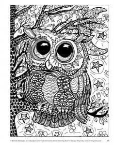 сова раскраска (15)
