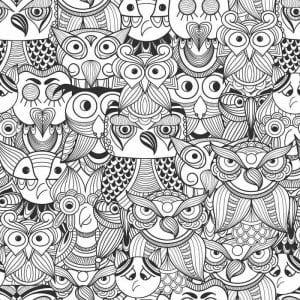 сова раскраска (154)
