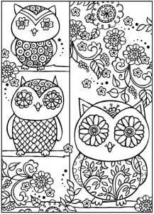 сова раскраска (158)