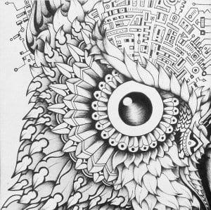 сова раскраска (169)