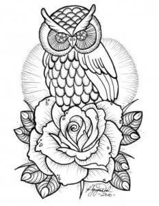 сова раскраска (170)