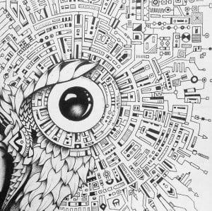 сова раскраска (171)