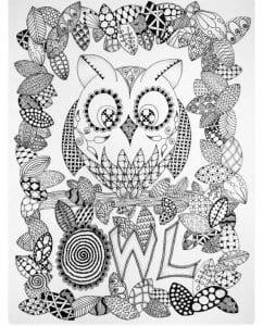 сова раскраска (186)