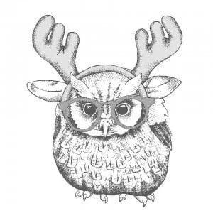 сова раскраска (190)