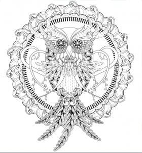 сова раскраска (195)