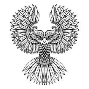 сова раскраска (197)