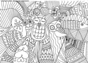 сова раскраска (198)