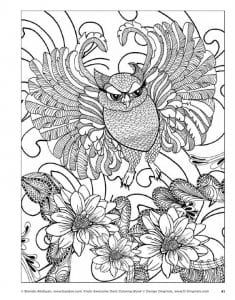 сова раскраска (2)