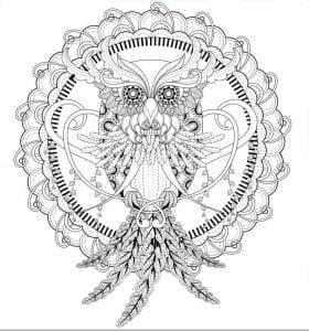 сова раскраска (20)