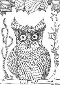 сова раскраска (209)