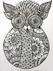 сова раскраска (219)