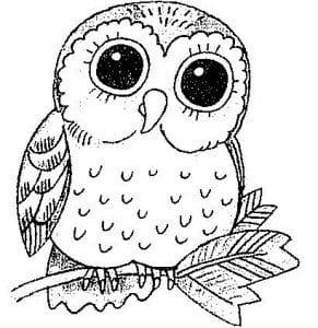 сова раскраска (224)