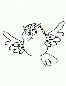 сова раскраска (228)