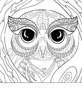 сова раскраска (245)