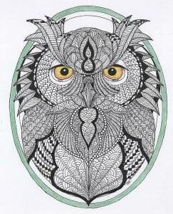 сова раскраска (246)