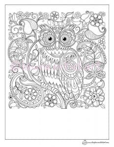 сова раскраска (259)