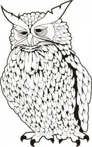 сова раскраска (269)