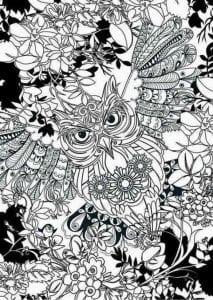 сова раскраска (27)