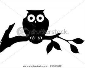 сова раскраска (274)