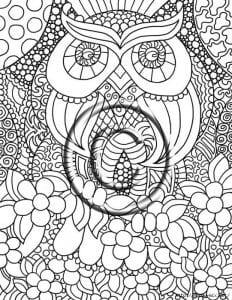 сова раскраска (279)